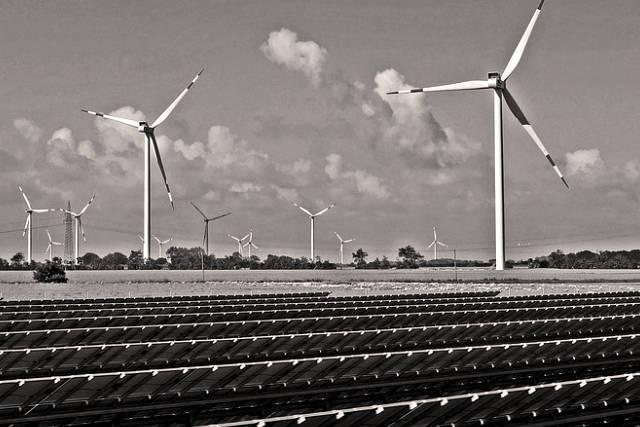 Agritech, cleantech, greentech, Développement durable, startup
